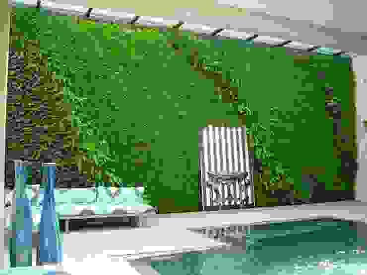 Muros vivos y albercas Albercas minimalistas de Verde360° Minimalista