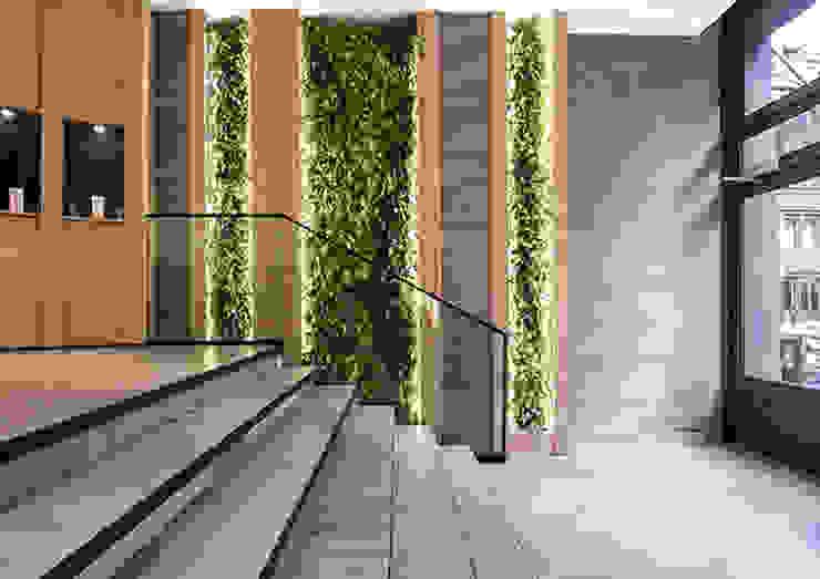 ingresso verde verticale Moab Architettura Negozi & Locali commerciali moderni Arenaria Verde