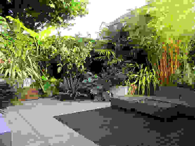 Tropical planting Lush Garden Design Tropical style garden