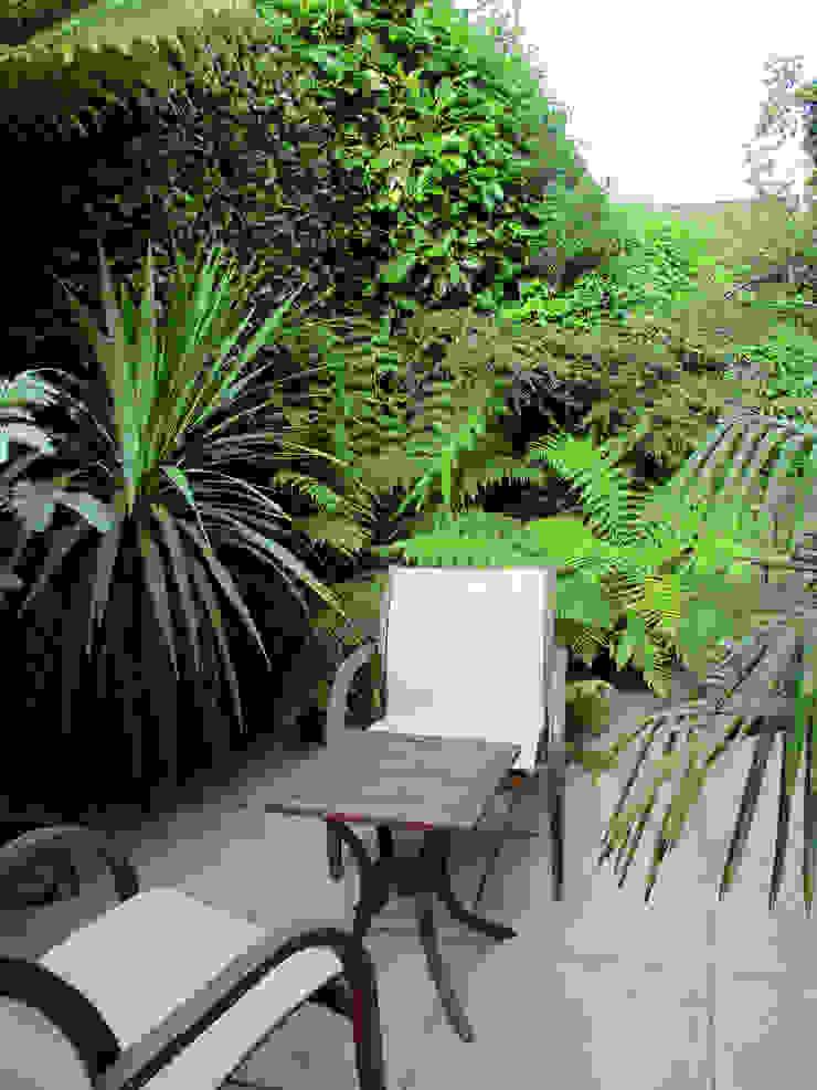 Tropical seating area Lush Garden Design Tropical style garden