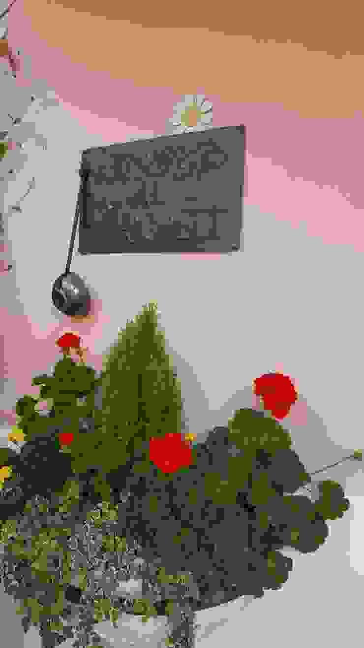 MARA GAGLIARDI 'INTERIOR DESIGNER' Front yard