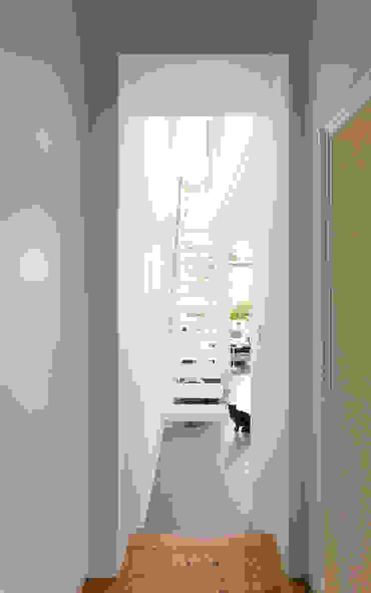 Minimalist corridor, hallway & stairs by Grobler Architects Minimalist