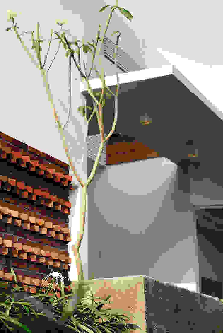 b66 house Balkon, Beranda & Teras Modern Oleh e.Re studio architects Modern