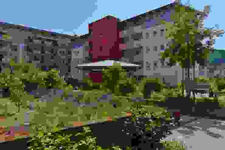 KAISER + KAISER - Visionen für Freiräume GbR Garden Plants & flowers
