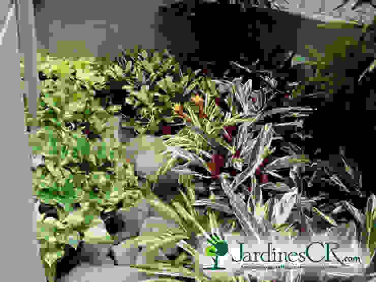 Diseño y Decoración de Jardines de JardinesCR Moderno