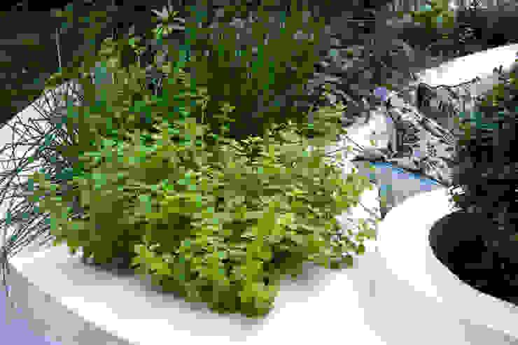 Herb bed Jardines de estilo mediterráneo de Earth Designs Mediterráneo