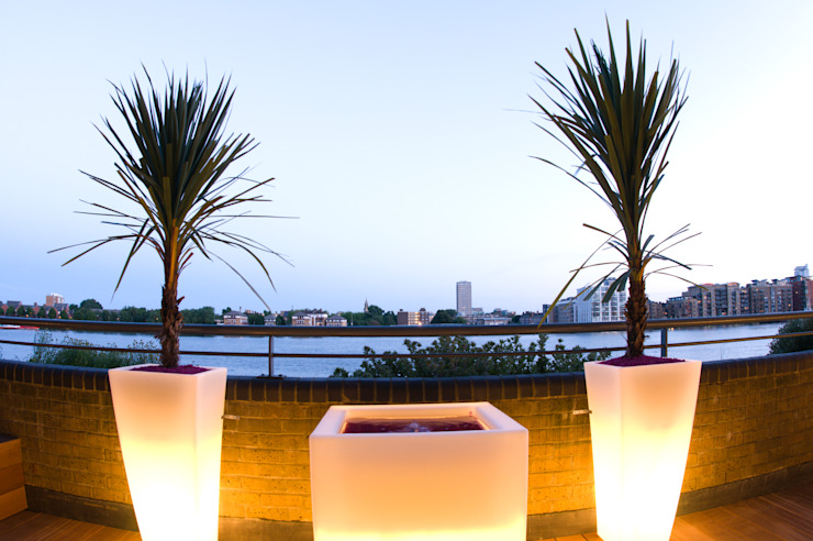 Illuminated planters with cordaylines Modern style gardens by Earth Designs Modern