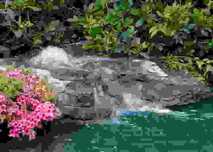 Schwimmteich in einem klassischen Garten Jürgen Kirchner Wasser + Garten Gartenteich