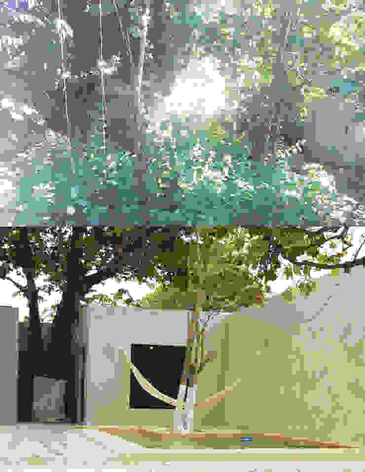 Jardín y Piscina Quinto Distrito Arquitectura