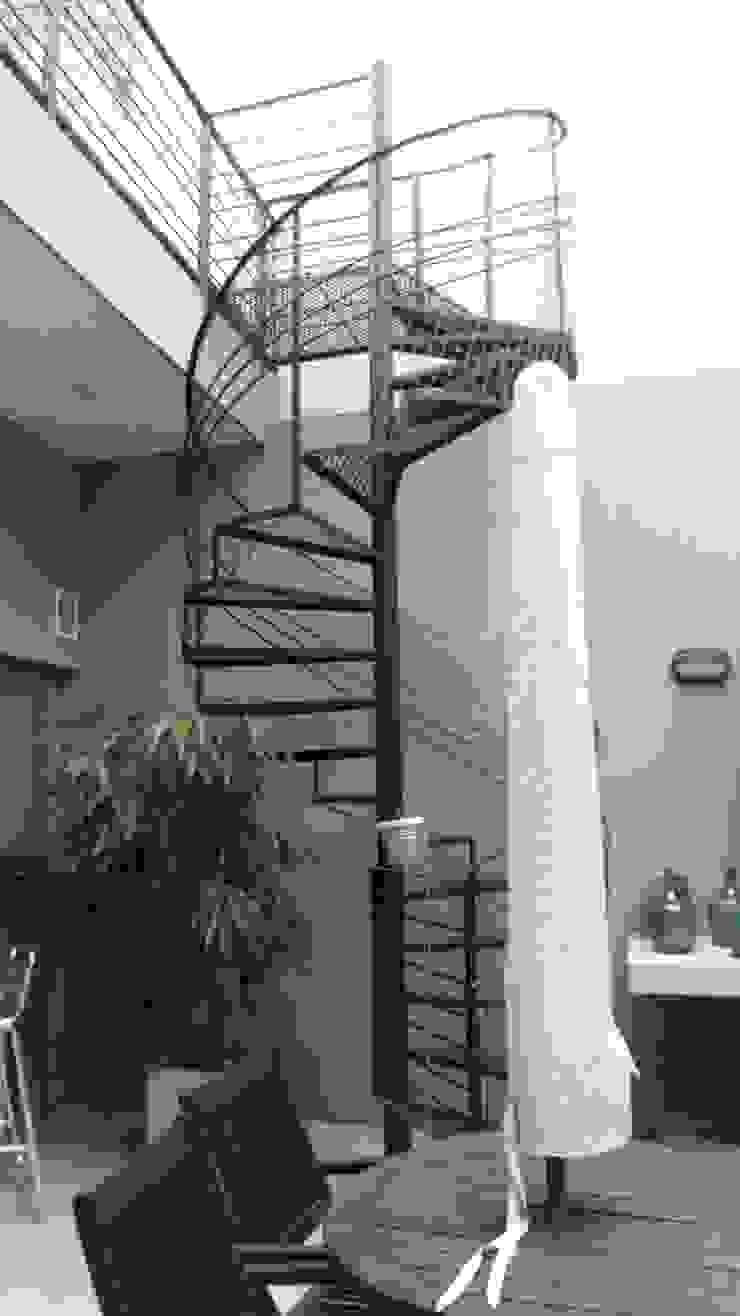 Escalera a pileta en terraza. Patio interior Pasillos, vestíbulos y escaleras modernos de NG Estudio Moderno Hierro/Acero