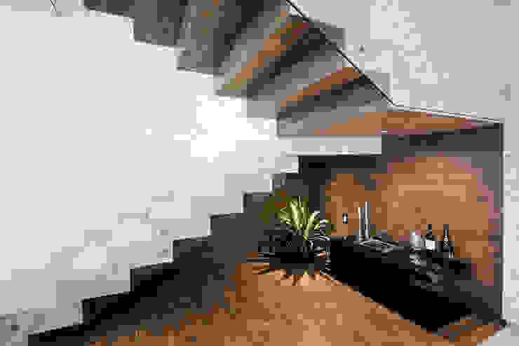 Cava Bodegas de estilo moderno de Constructora e Inmobiliaria Catarsis Moderno Madera Acabado en madera