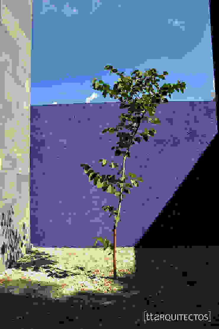 [TT ARQUITECTOS] Modern balcony, veranda & terrace Purple/Violet