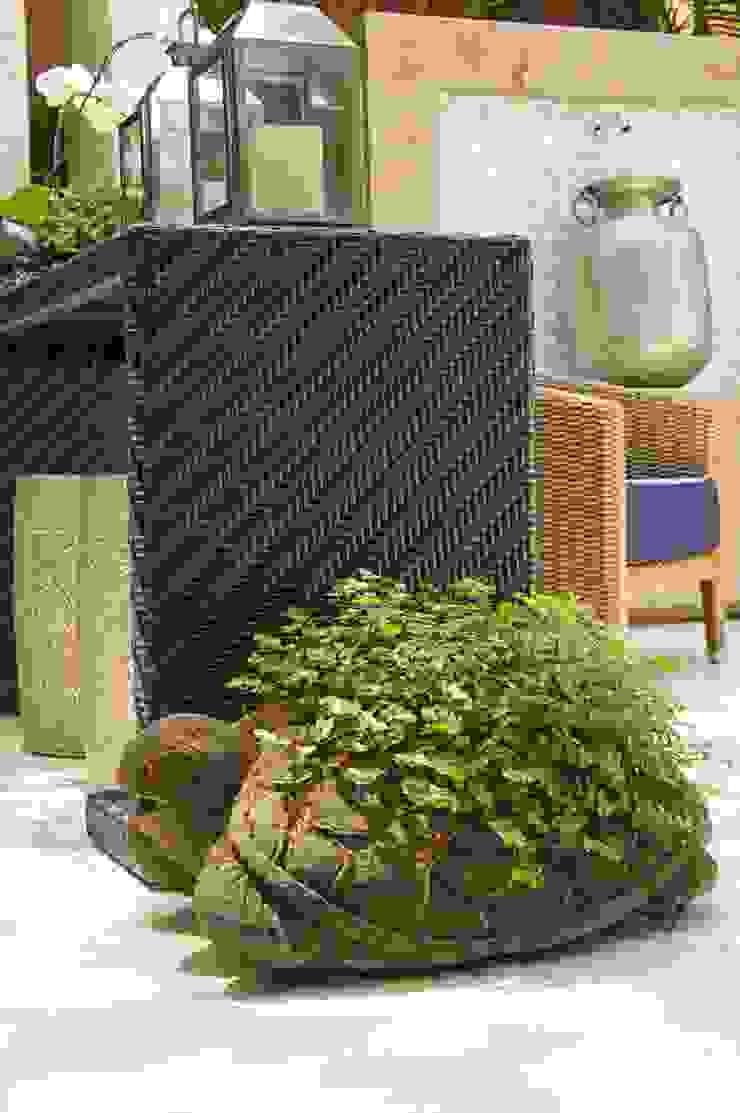 Interart Design de Interiores Modern conservatory Limestone Black