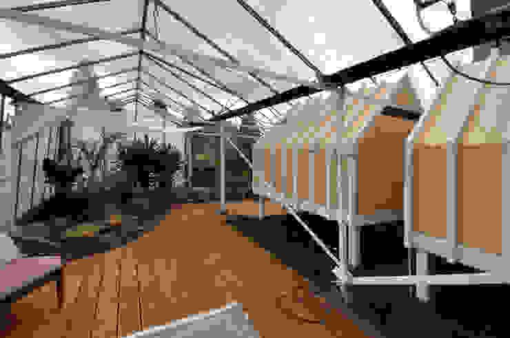In de kas Landelijke balkons, veranda's en terrassen van Marks - van Ham architectuur Landelijk