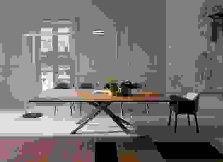 餐廳家具配置: 現代  by Hefeng furniture, 現代風 合板