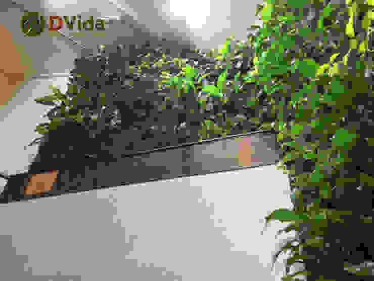 Jardines verticales interiores para hoteles de DVida Jardines verticales Moderno