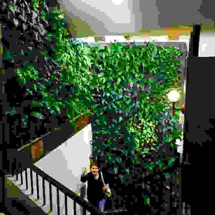 Jardines verticales en interior para centros comerciales de DVida Jardines verticales Moderno