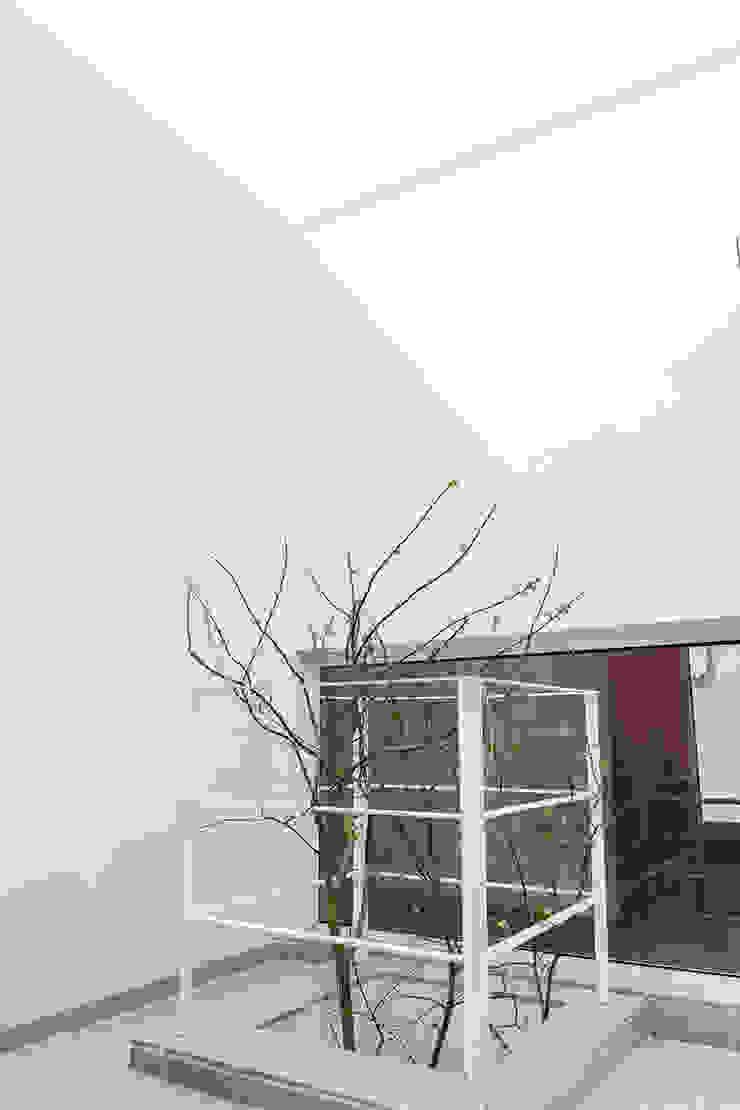 청향실(聽香室) 모던스타일 온실 by AAPA건축사사무소 모던