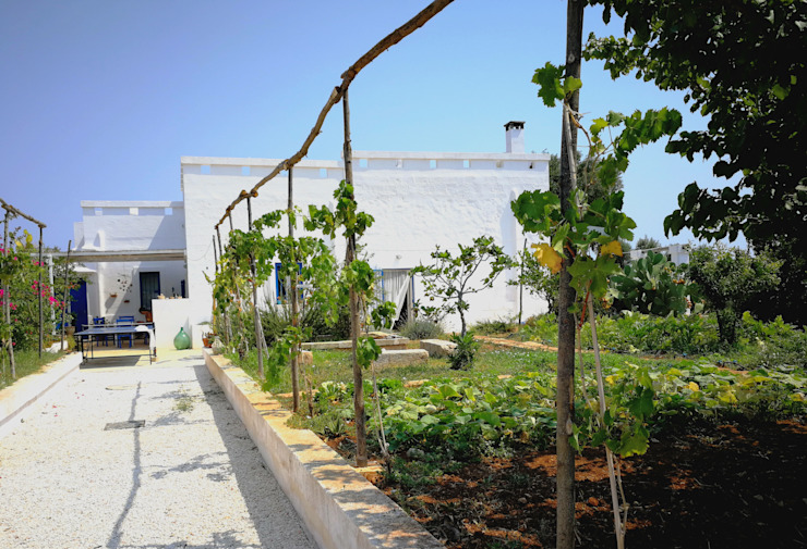 una classica pergola con la vite e la zona dove sono state utilizzate in particolar modo piante edibili Case in stile mediterraneo di Natura&Architettura Mediterraneo