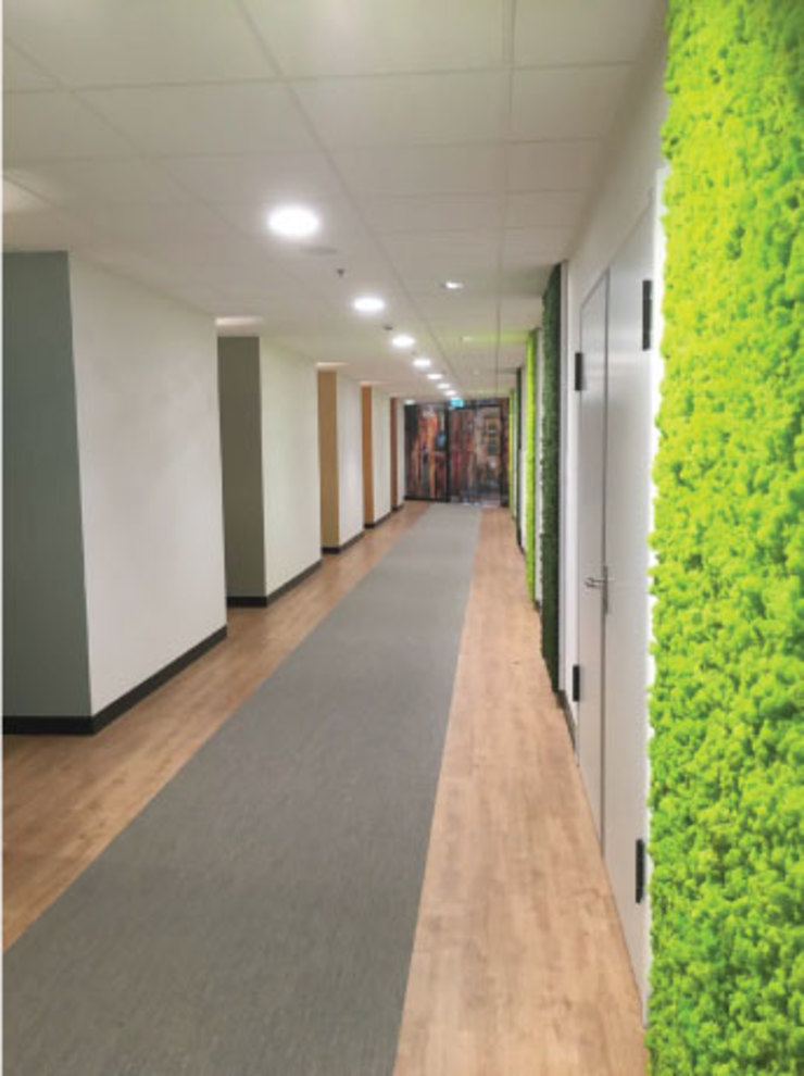 Hal naar de 8 kamers Landelijke ziekenhuizen van Studio Nor Landelijk