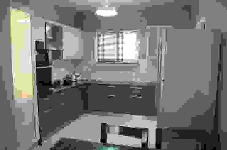 KITCHEN Modern kitchen by BENCHMARK DESIGNS Modern Plywood