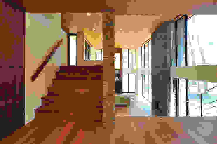 精進場川の家 モダンスタイルの 玄関&廊下&階段 の 鎌田建築設計室 モダン