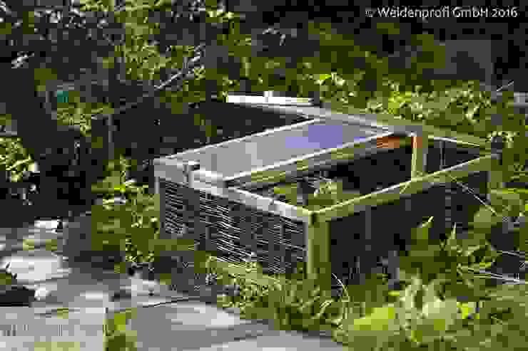 Frühbeet aus Weide und Kiefernholz Moderner Garten von naturgeflechte24 Modern Holz Holznachbildung