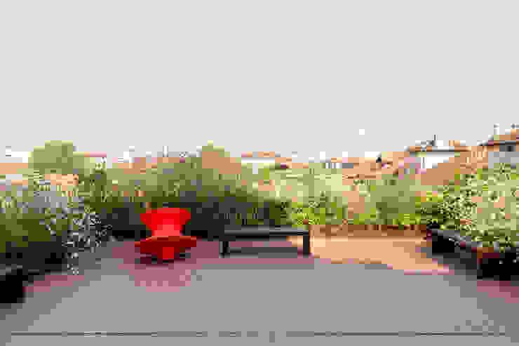 Jardines de estilo moderno de marta carraro Moderno