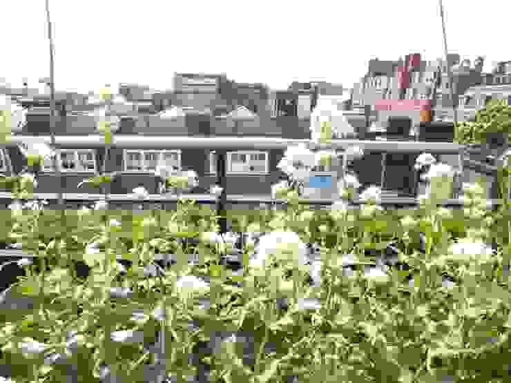 Ganton Street Roof Terrace London by Aralia Modern Metal