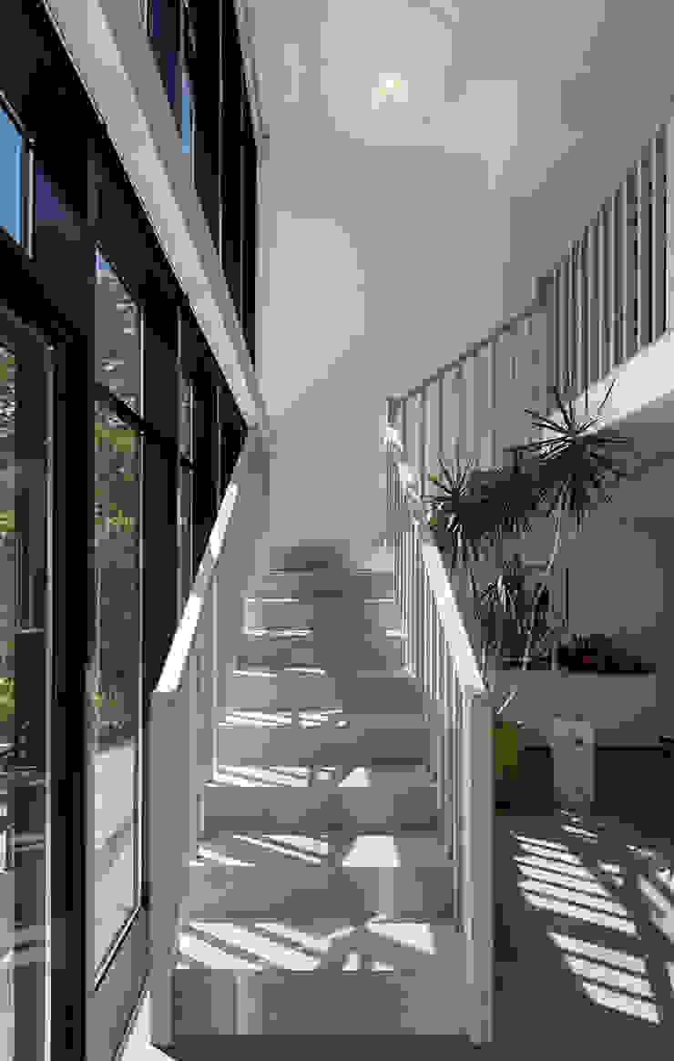 Carroll Gardens Townhouse Modern corridor, hallway & stairs by andretchelistcheffarchitects Modern