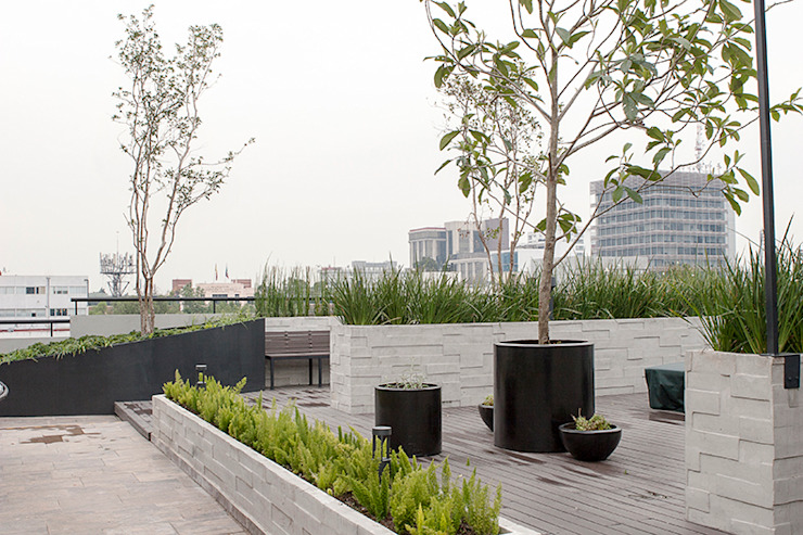 Hábitas Roof terrace Concrete Brown