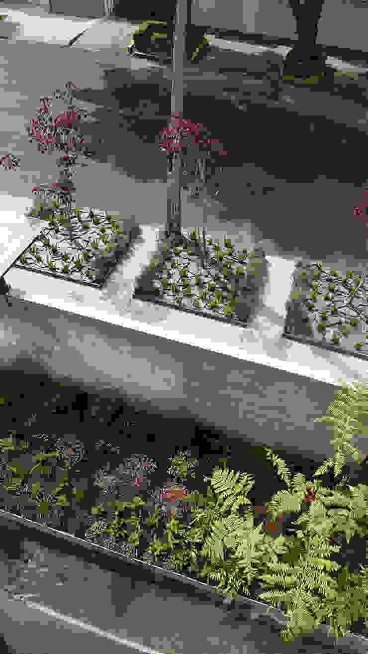 Hábitas Jardins de fachada Verde