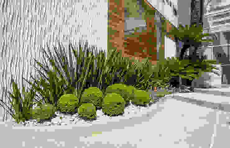 Tropischer Garten von Le Jardin Arquitectura Paisagística Tropisch