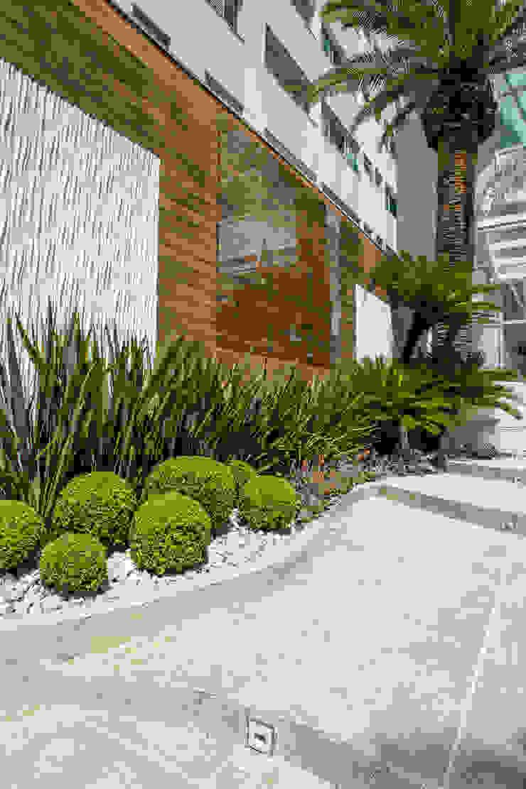 Vườn phong cách nhiệt đới bởi Le Jardin Arquitectura Paisagística Nhiệt đới
