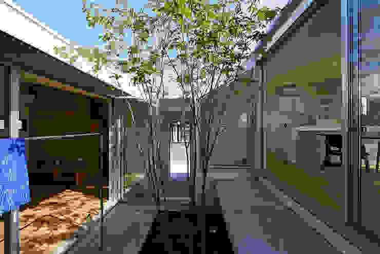 Modern garden by arc-d Modern