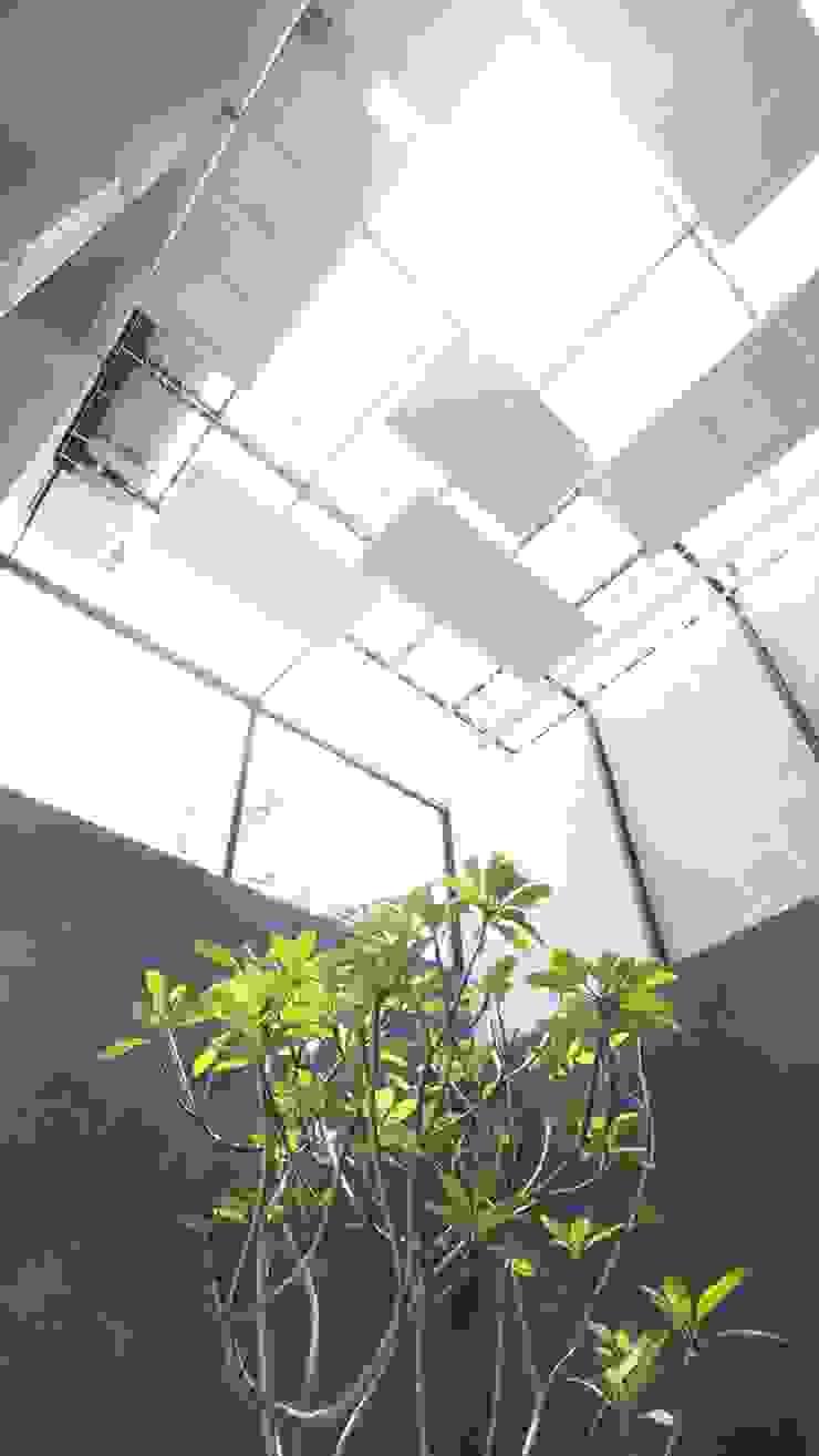 Innercourt Cage House Oleh Parametr Architecture Modern Besi/Baja