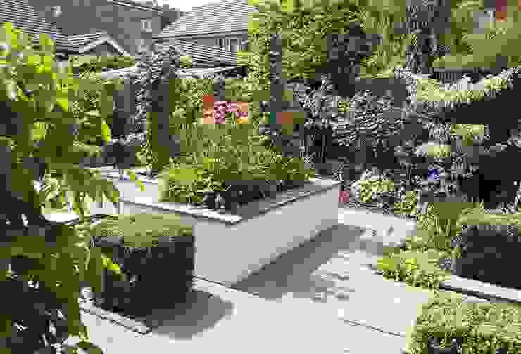 Small, contemporary garden Bracknell, Berkshire Linsey Evans Garden Design Modern garden