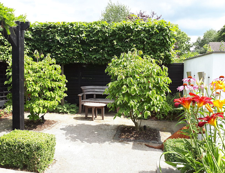 Small, contemporary garden Bracknell, Berkshire Modern garden by Linsey Evans Garden Design Modern