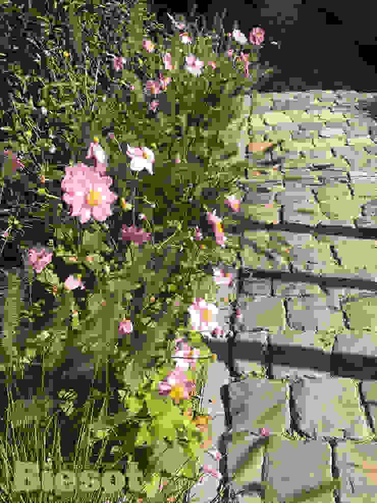 Tuin op IJburg Amsterdam van Biesot