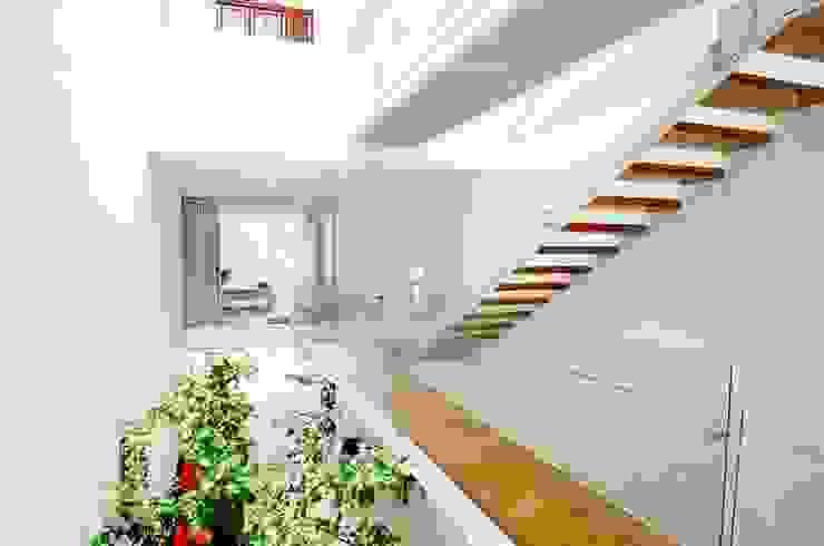 Pasillos y recibidores de estilo  por Công ty trách nhiệm hữu hạn ANP