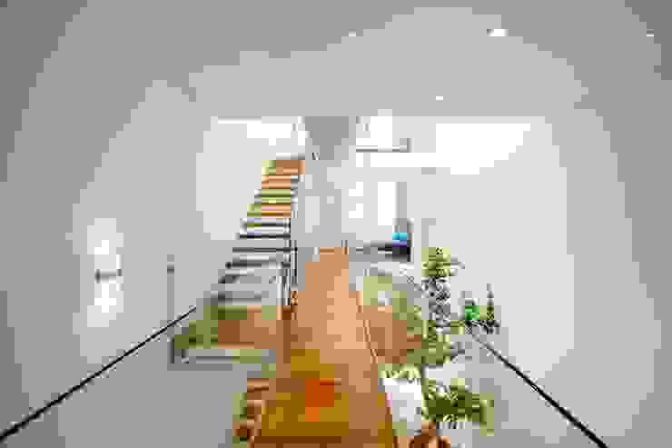 Công ty trách nhiệm hữu hạn ANP Pasillos, vestíbulos y escaleras de estilo moderno