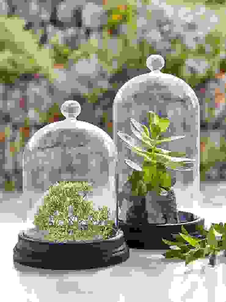 modern  von Spacio Collections, Modern Glas
