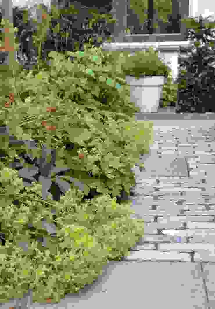 Oprit en voortuin zijn één! van Dutch Quality Gardens, Mocking Hoveniers