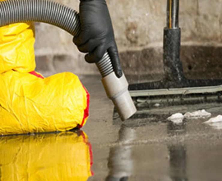 Carpet Cleaners Auckland by Carpet Cleaners Auckland