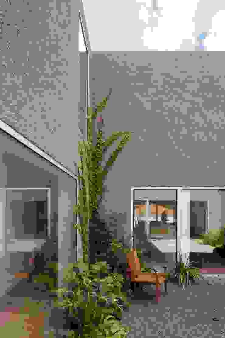 House with Three Courtyards EXTRASTUDIO Mediterranean style gardens