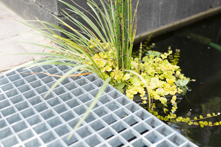 Moderne stadstuin met vijver van Dutch Quality Gardens, Mocking Hoveniers