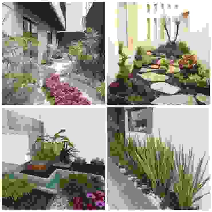 25 ideas para darle vida a tu hogar con jardines pequeños homify Jardines de estilo moderno