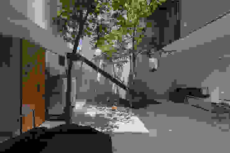 GERIRA ARCHITECTS Minimalist corridor, hallway & stairs