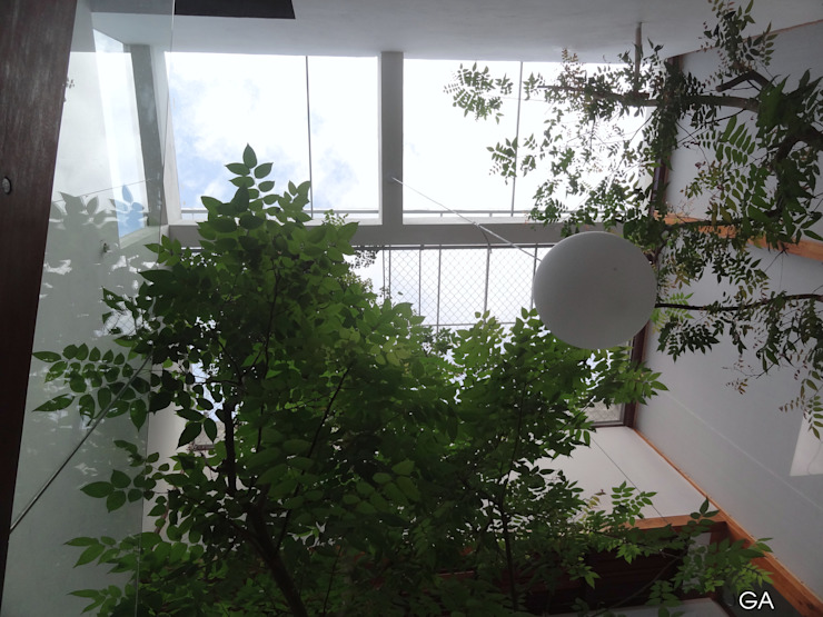 GERIRA ARCHITECTS Minimalist style garden