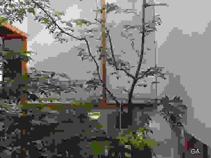 GERIRA ARCHITECTS Minimalist walls & floors